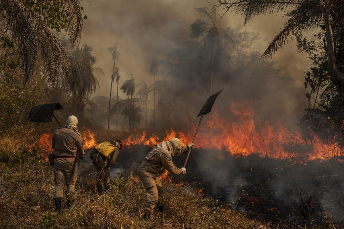 Feuerkatastrophe im Pantanal in Brasilien
