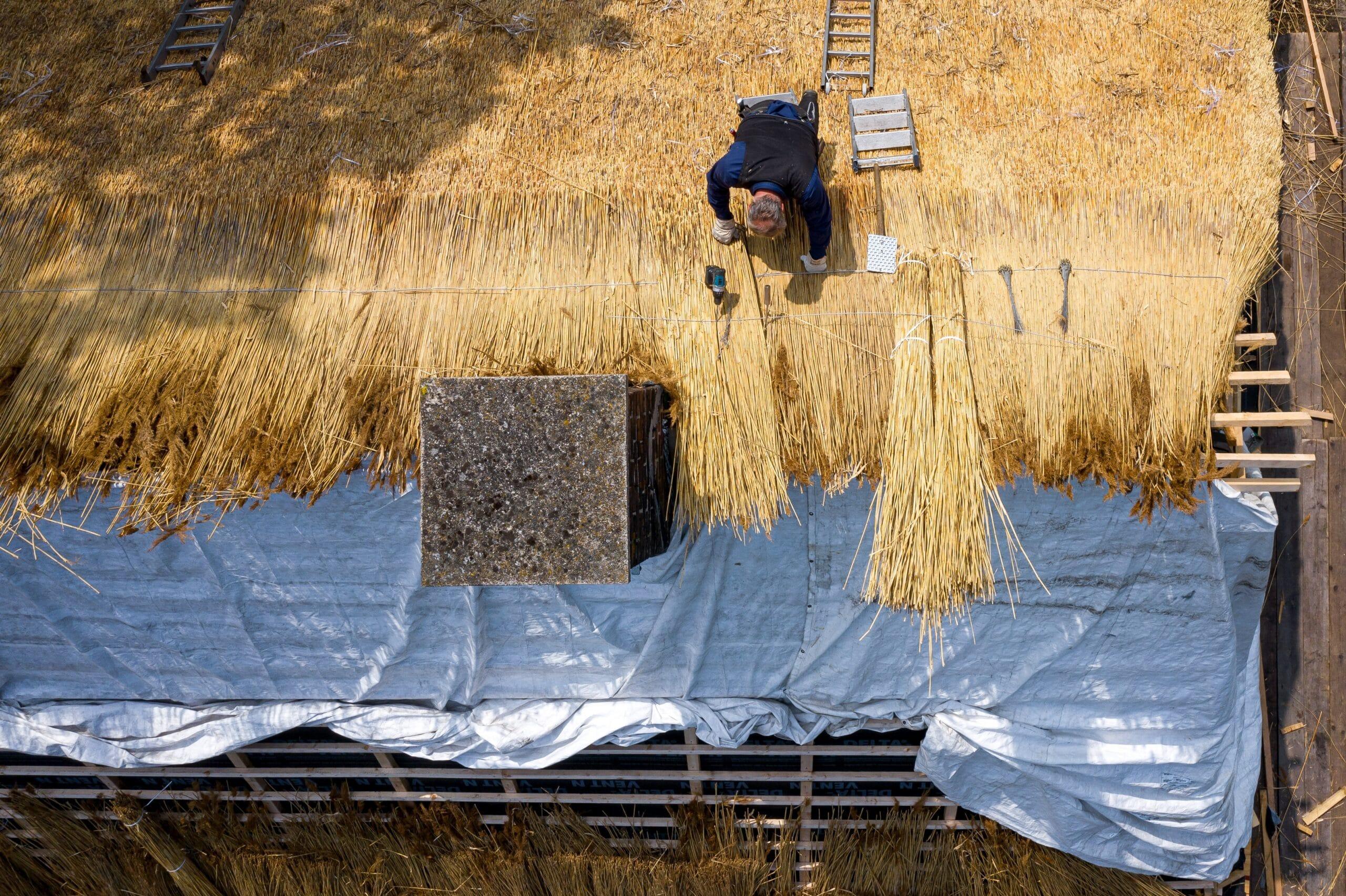 Reetdächer prägen vor allem in Norddeutschland das Landschaftsbild - eine der ältesten Handwerkstechniken beim Hausbau ist noch heute gefragt. Doch bei dem traditionsreichen Handwerk gibt es Zukunftssorgen.