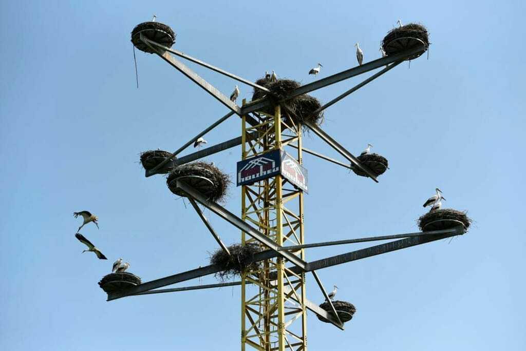 Storchennester auf einem umgebauten Baukran