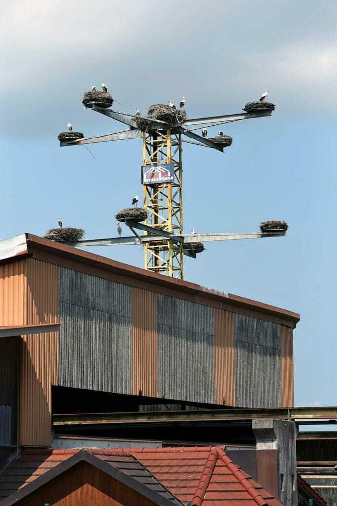 Der Storchenkran über den Dächern von Zimmerei und Baubetrieb.