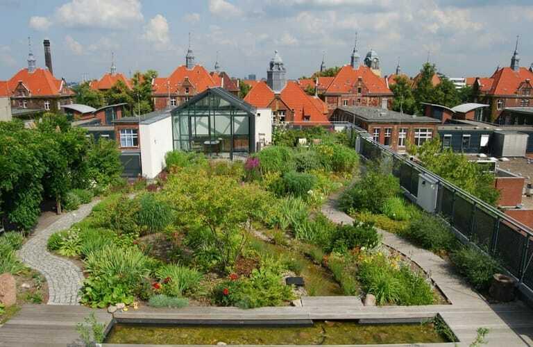 Intensive Dachbegrünung auf der Wiegmann-Klinik in Berlin